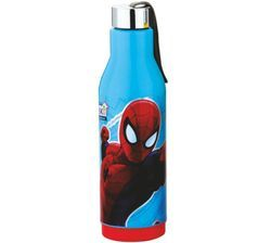 Cool Energy 800 Insulated Bottle