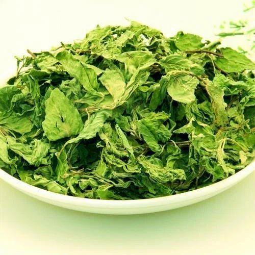 4958a24eaa89 Fresh Mint Leaves