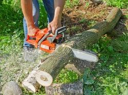 Chain Saw Machine - Electric Chainsaw Manufacturer from Rajkot
