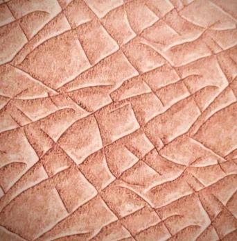PU Coated Printed Leather