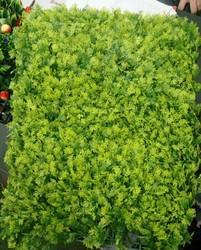 Hyperboles Artificial Green Vertical Wall