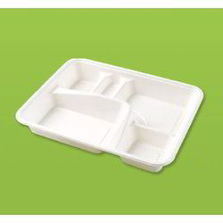 Compartment Disposable Tray