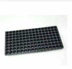 Seeding Trey (104 Hole ) Use For Seed Germination