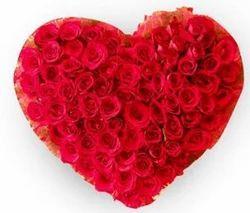 The Precious Heart Flower