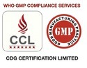 WHO GMP Compliance Services