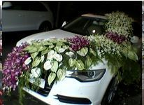 Wedding car decoration in ahmedabad wedding car decoration service junglespirit Image collections