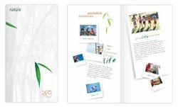 Company Brochure Designing Services