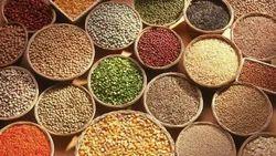 Food Grain