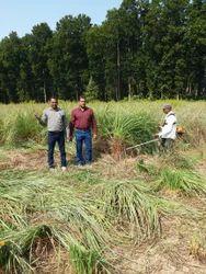 Training For Farmers