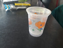Water Disposable Plastic Glass