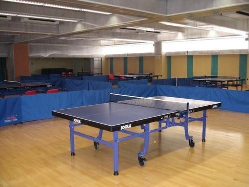 Table Tennis Court Flooring At Rs 300 Square Feet