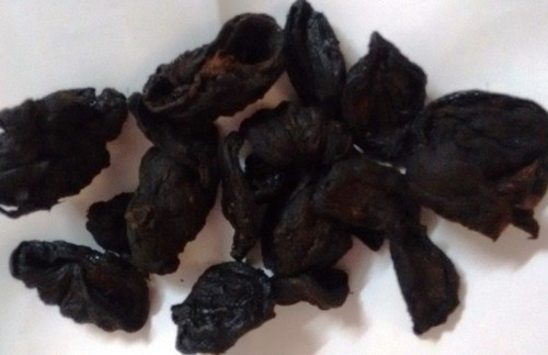 Garcinia Cambogia Fruit Rind