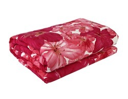 Double Bed AC Blankets