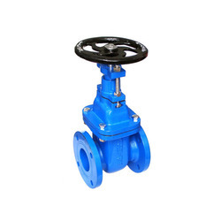 Kartar Cast Iron Sluice Valve, Size: 50 mm