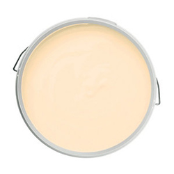Chamak  Silk Acrylic Emulsion