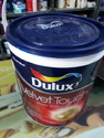 Dulux Emulsion Paints