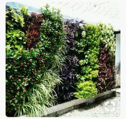 Hyperboles Vertical Garden