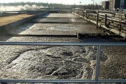 Specialized Microbes for Activated Sludge Process