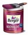 Berger Weather Coat Paint
