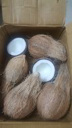 Pollachi Coconut( Bulk Quantity Export inquiries only)