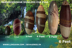 Pure Narmadeshwar Shivling For Temple