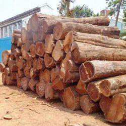 Teak Wood Testing Services
