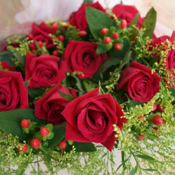 Rose Flower in Hyderabad Get Latest Prices and Mandi Rate from