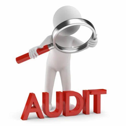 Statutory Audit Of Company