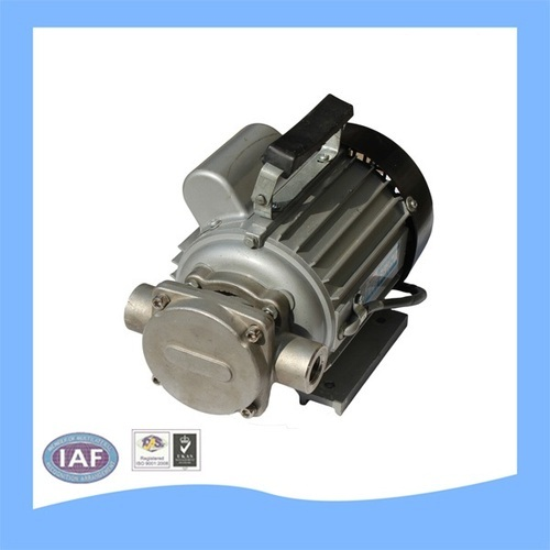 Maruti DCTP SS 304 Oil Circulation Pump