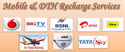 Erecharge Bytes Online Mobile & Dth Recharge Portal, India , For Yes