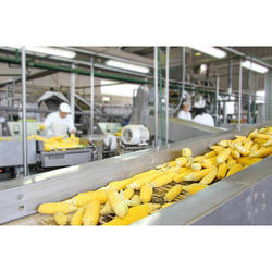 Industries Food Processing Pest Control Services