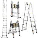 Telescopic Ladder