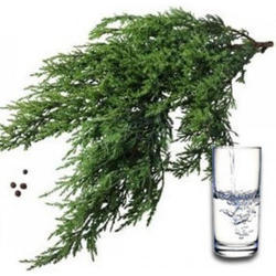 Cypress Floral Water