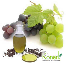 Grapes Seed Extract