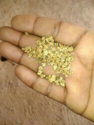 All Green Palak Seeds, For Vegetabile