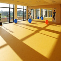 1000 Sq Ft Aerobic Halls Flooring