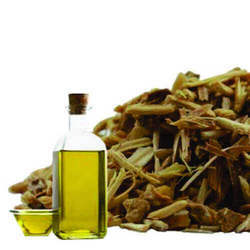 Soluble Shatavari Oil