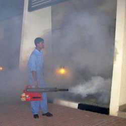 Insecticide Treatment Service