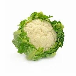 Fresh Cauliflower, Packaging: Plastic Bag or Polythen