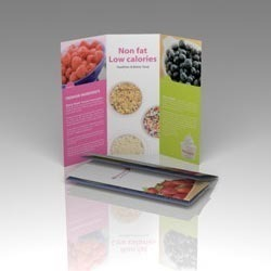 Pamphlet Offset Printing Services