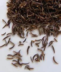 Black Jeera/ Black Cumin Seed