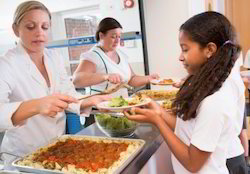 School Catering Services