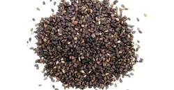 Raw Materials Sesame, Pack Size: 75 Kg Per Bag