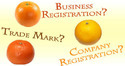 Lawyer For Business Registration