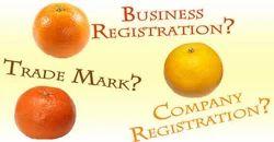 Lawyer For Business Registration