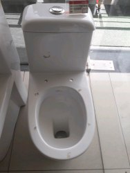 Western Toilet At Best Price In India