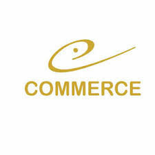 E-Commerce Stock Auditing Services