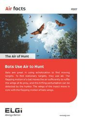 THE AIR OF HUNT