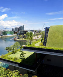Green Roofs Services