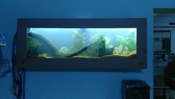 Wall Mounted Aquarium Manufacturers Suppliers Amp Exporters